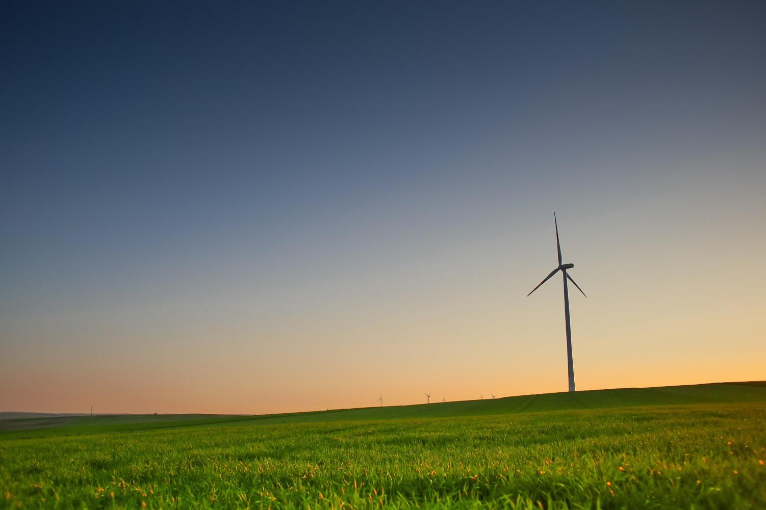 UK-Poland Green Recovery Forum: brytyjsko-polskie forum o współpracy w zakresie zielonych technologii. 28 października